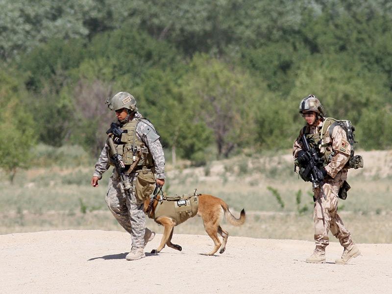 Čeští vojáci a pes v neprůstřelných vestách