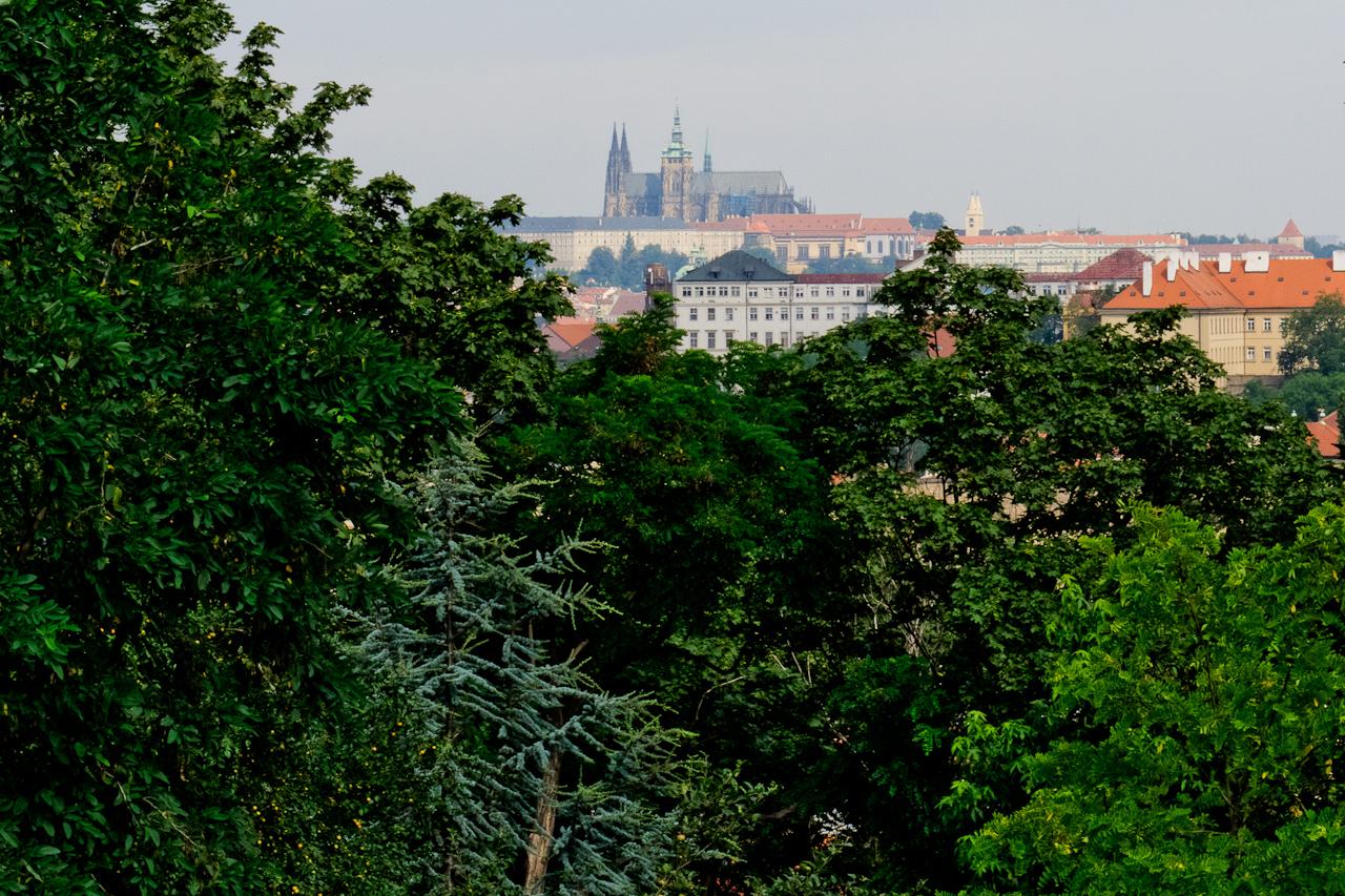 Zeleň v Praze