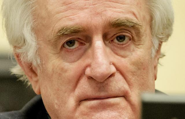 Mezinárodní trestní tribunál pro bývalou Jugoslávii v Haagu odsoudil bývalého bosensko-srbského prezidenta Radovana Karadžiče ke 40 letům vězení