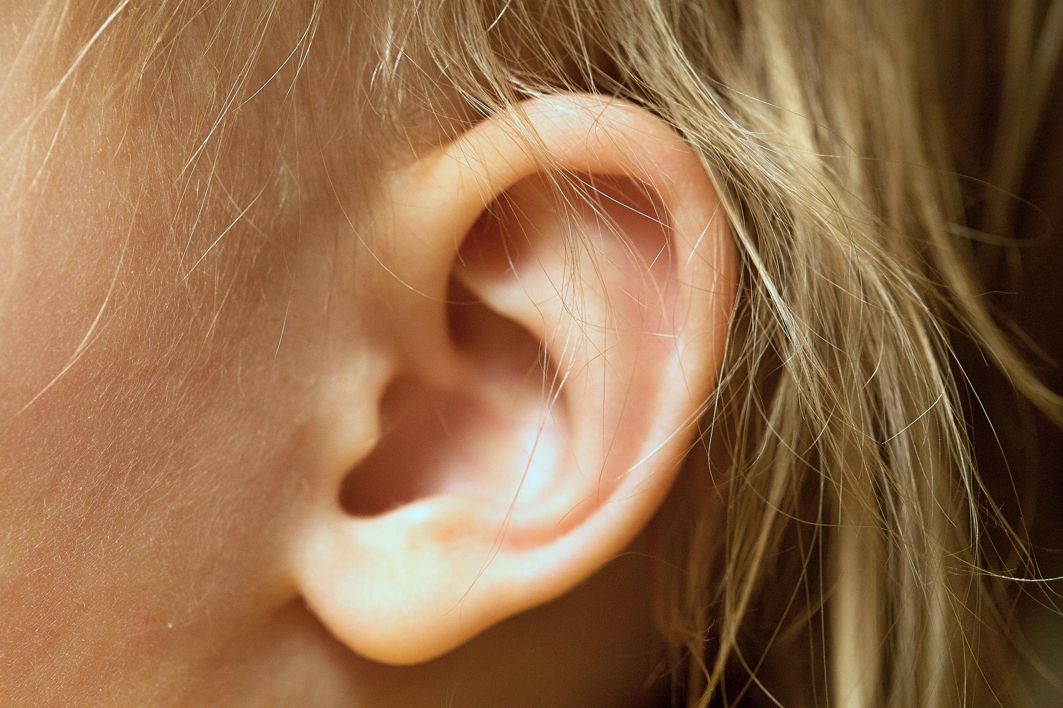Ucho (ilustrační snímek)