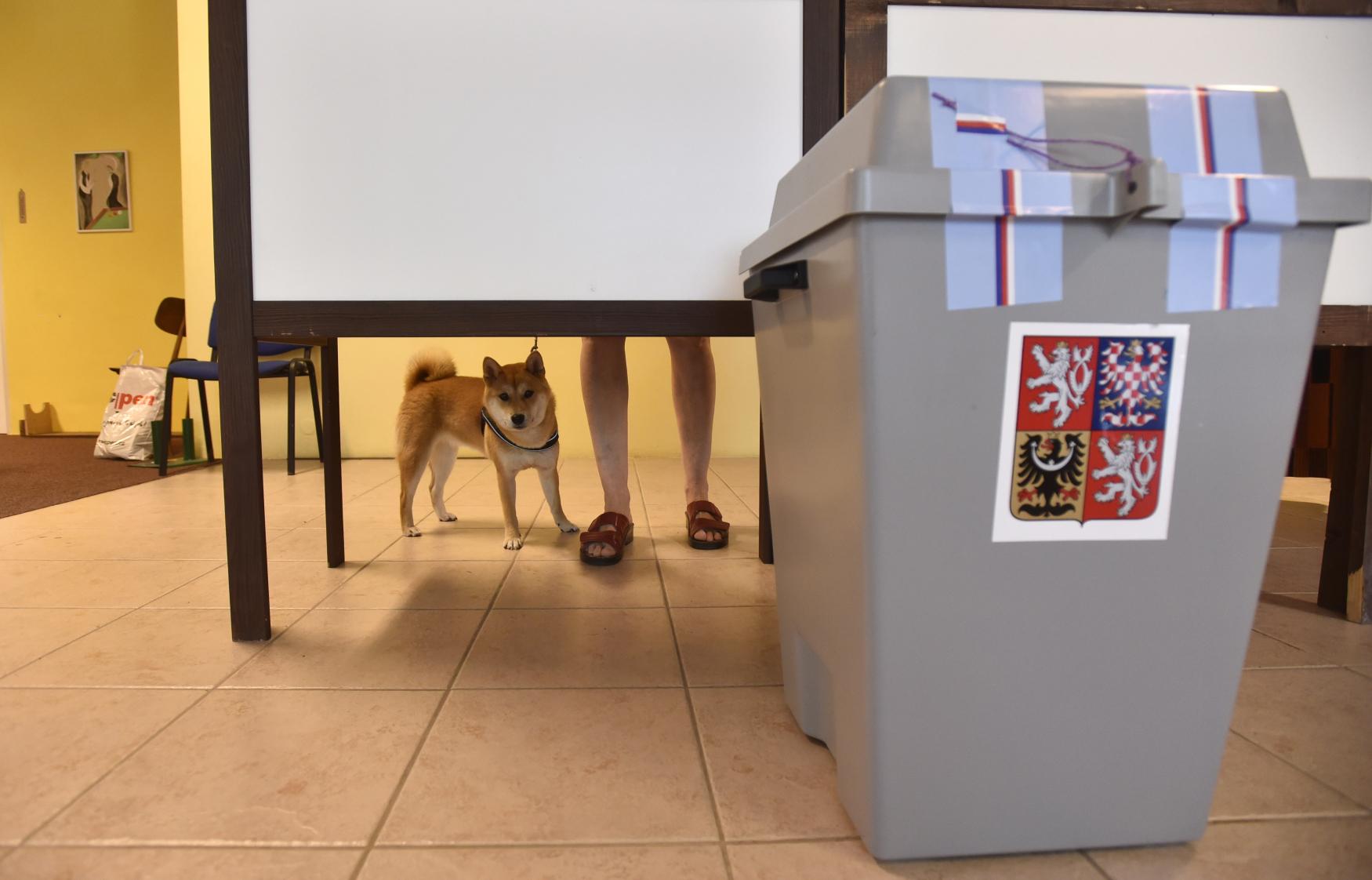 Hlasování při volbách do Evropského parlamentu