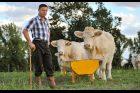 Kraj chce bojovat s nedostatkem zemědělců a dalších pracovníků v odvětví (ilustrační snímek)