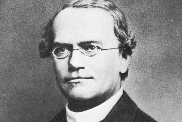Biolog, matematik a katolický kněz Gregor Johann Mendel