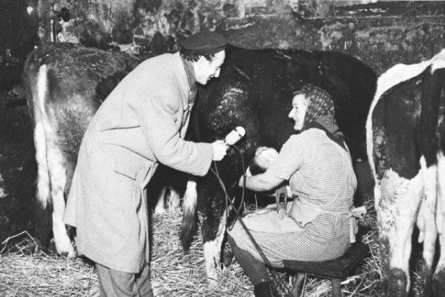 Reportáž z JZD Volevčice, redaktor B. Ujček (1950)