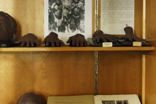 Sbírka věnovaná Pygmejům (Hrdličkovo muzeum člověka UK)