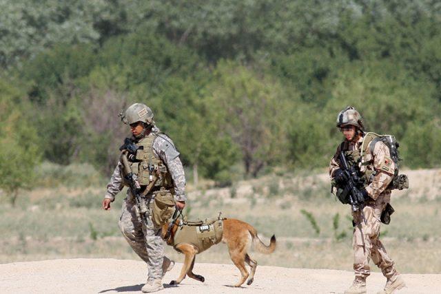 Čeští vojáci a pes v neprůstřelných vestách | foto:  601. skupina speciálních sil