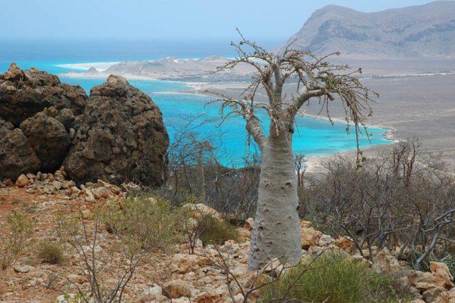 Jemen a ostrov Sokotra