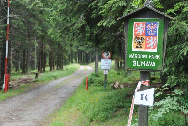 Národní park Šumava (ilustrační foto)