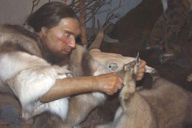Rekonstrukce podoby neandrtálce v Muzeu neandertálce u německého Mettmannu