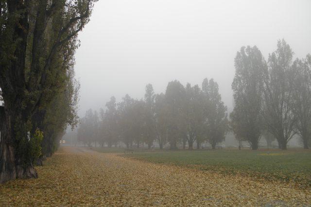 Smog v Praze 6
