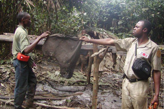 Tábor pytláků slonů v Demokratické republice Kongo