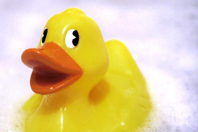 gumová kachnička (ilustrační foto)