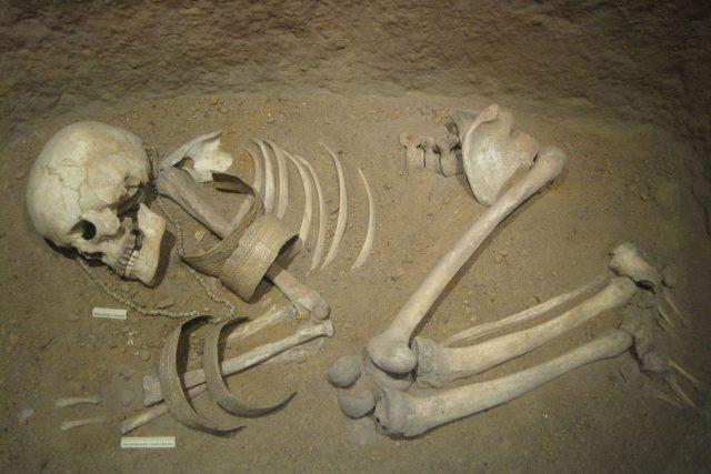 Detailní výzkum kosterních pozůstatků vyžaduje součinnost antropologů,  archeologů,  ale i molekulárních biologů a dalších expertů | foto: Wikimedia Commons,  Douglas Fry