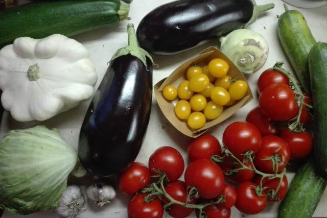 Čerstvá zelenina od soukromého zemědělce