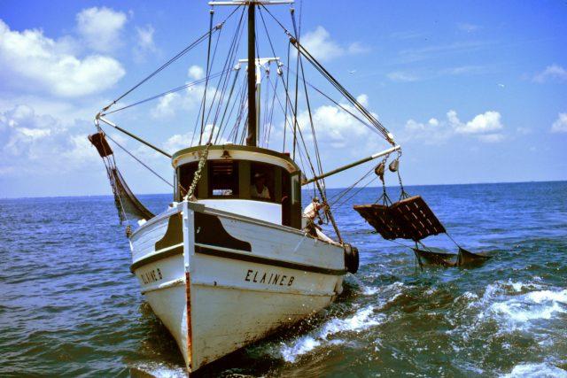 Malá rybářská loď využívá vlečných sítí k lovu krevet