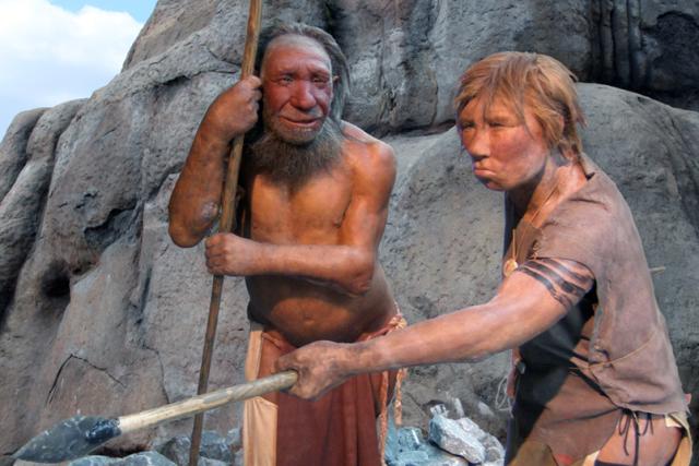 Homotová rekonstrukce vzhledu neandrtálců