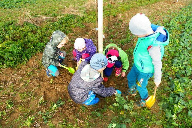 Skupiny dětí při sázení stromků