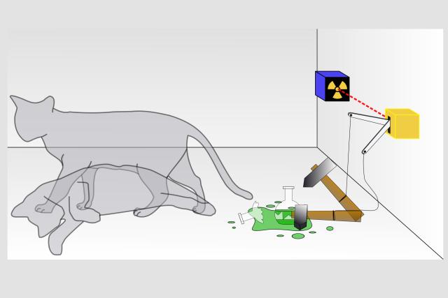 Schrödingerova kočka: po jedné hodině je 50% pravděpodobnost, že unikne jedovatý plyn a zabije kočku