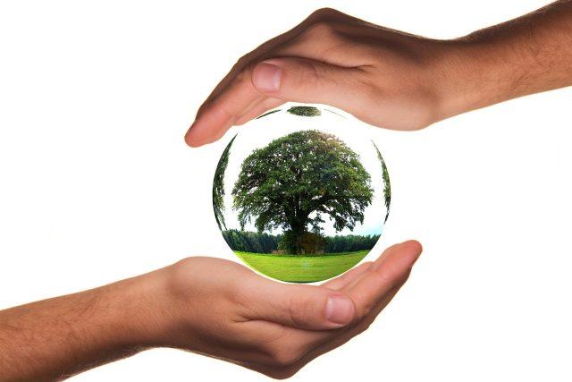 Země, ekologie