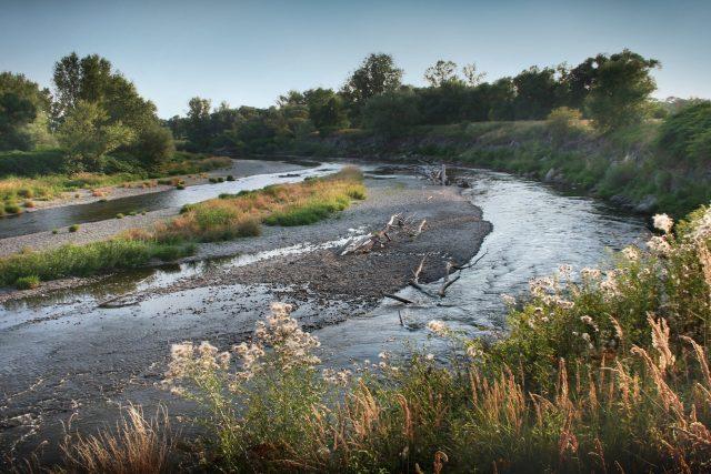 Hraniční meandry řeky Odry