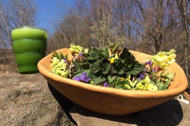 Přišlo jaro, je čas se najíst v přírodě, radí na svém blogu Bartek Krzewinski