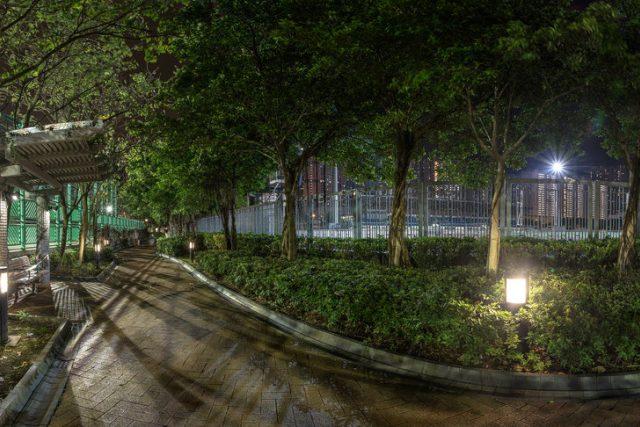 Noční město, park, světelné znečištění