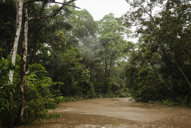 Deštný prales v Peru