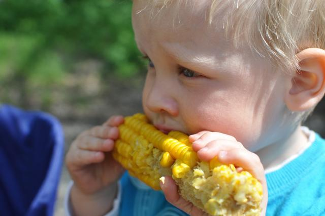 Dítě jako vegan