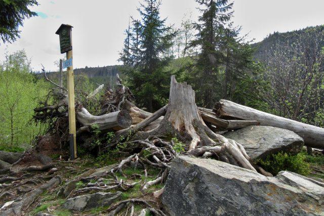1. zóna Národního parku Šumava