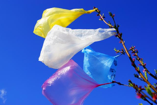 Igelitové tašky (ilustrační foto)