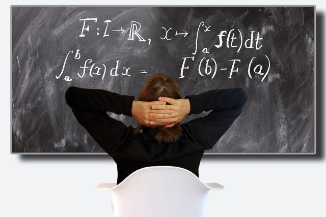 vysokoškolský pedagog