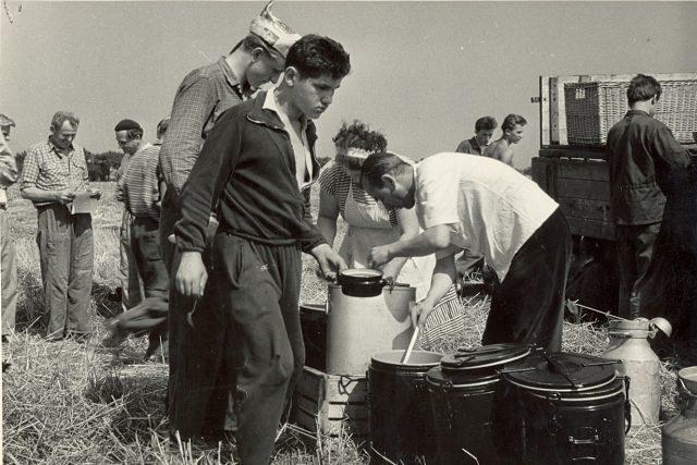 Sklizeň chmele v 60. letech na Lounsku a Žatecku