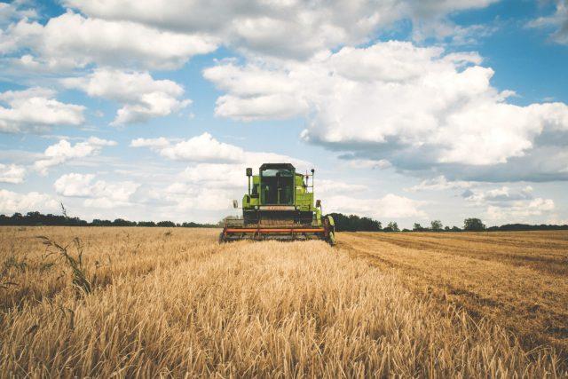 pole - půda - zemědělství