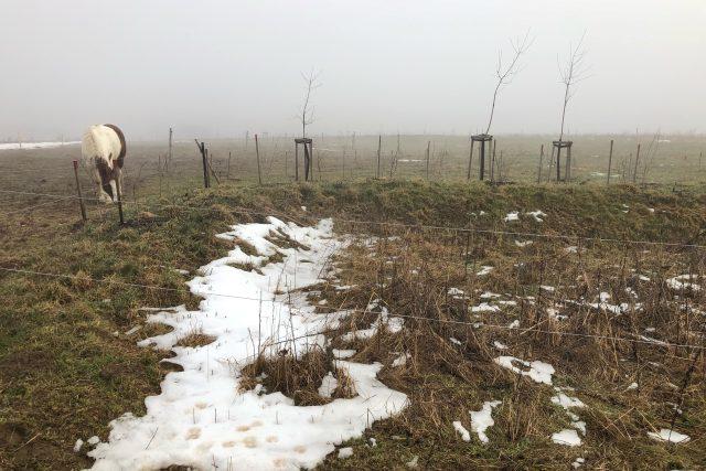 Strouhy zadrží tající sníh nebo dešťovou vodu