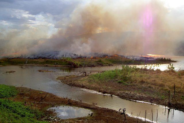 Vypalování pralesů v Amazonii
