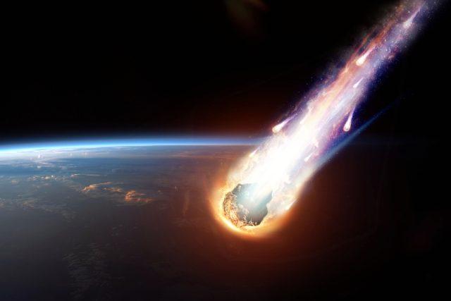 Družice | foto: Shutterstock