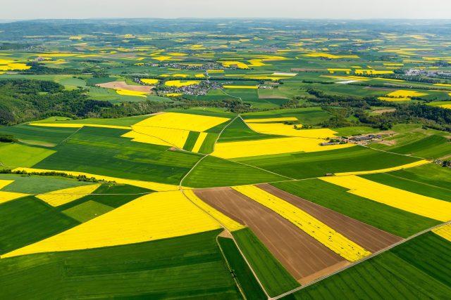 Rozdělená pole (ilustrační foto)