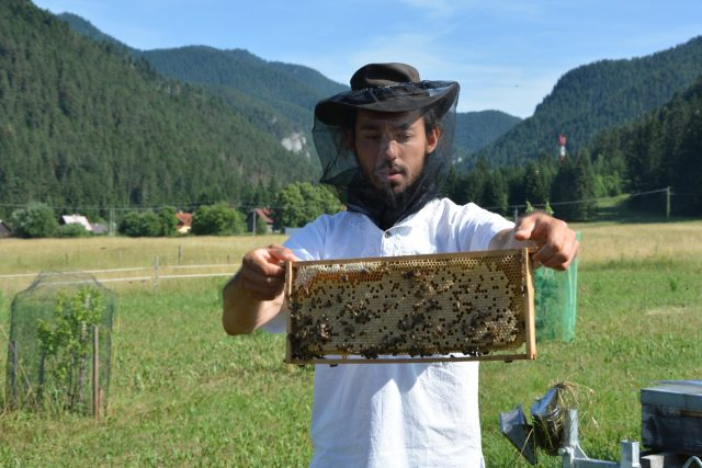 včelař Jaroslav Bajko