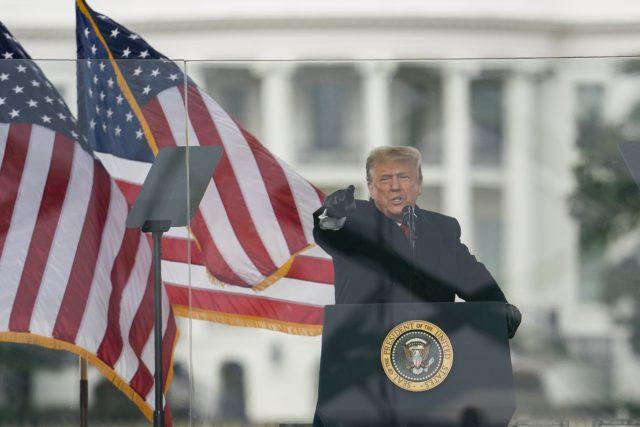 Donald Trump před davem, který protestoval ve Washingtonu proti výsledkům prezidentských voleb