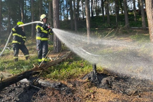 Tři jednotky hasičů likvidovaly požár lesní paseky v Náchodě   foto: HZS Královéhradeckého kraje