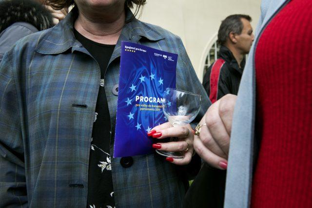 Program pro volby do Evropského parlamentu