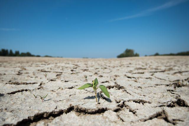 Zpráva Mezivládního panelu pro změny klimatu upozorňuje, že ke zmírnění globálního oteplování nestačí jen snižovat emise oxidu uhličitého produkovaného továrnami či auty, ale je třeba změnit způsob využívání půdy i chování spotřebitelů