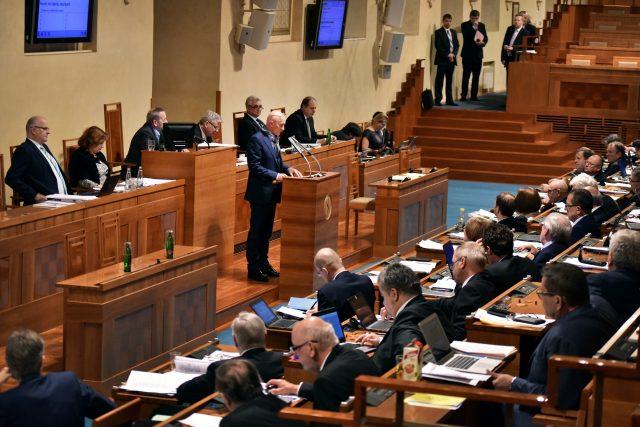 Bez Senátu by o politických otázkách rozhodovaly jen stranická hlediska | foto: Michaela Danelová, Český rozhlas