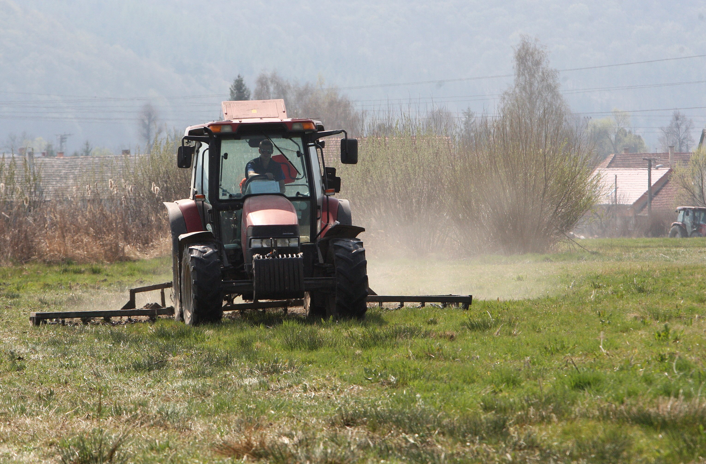 Květnové srážky zmírnily dopady sucha. Problémy na polích ale přetrvávají (ilustrační snímek)